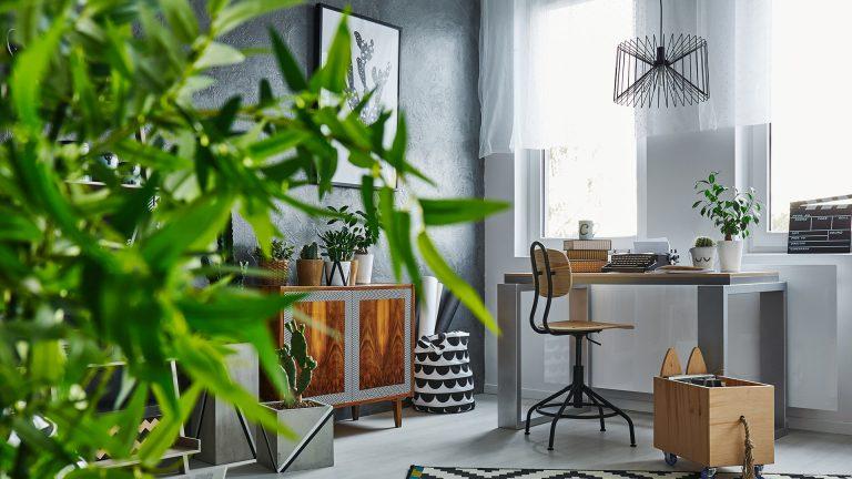 תמונה של עיצוב רהיטים בהתאמה אישית